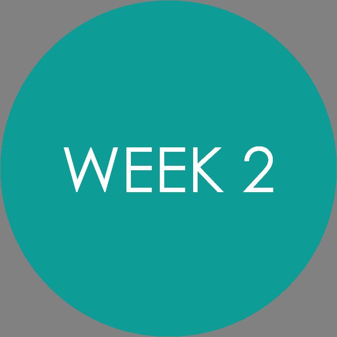Week 2 Timetable